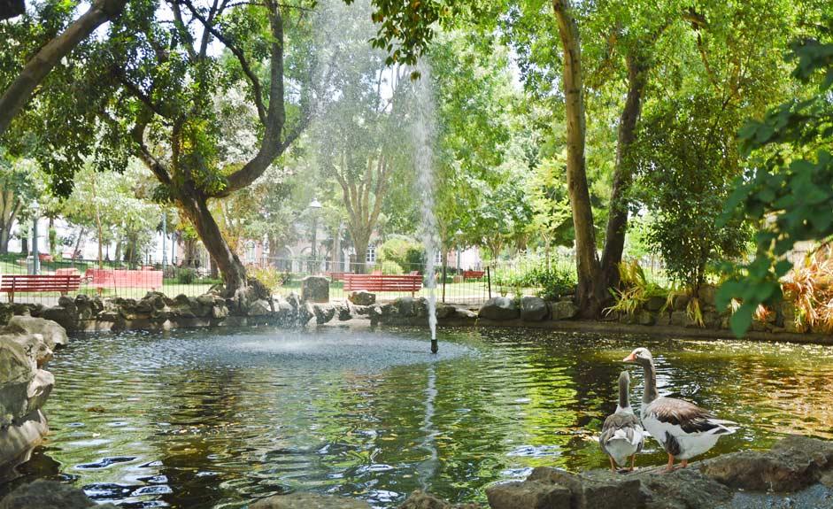 Fountain in Jardim Publico
